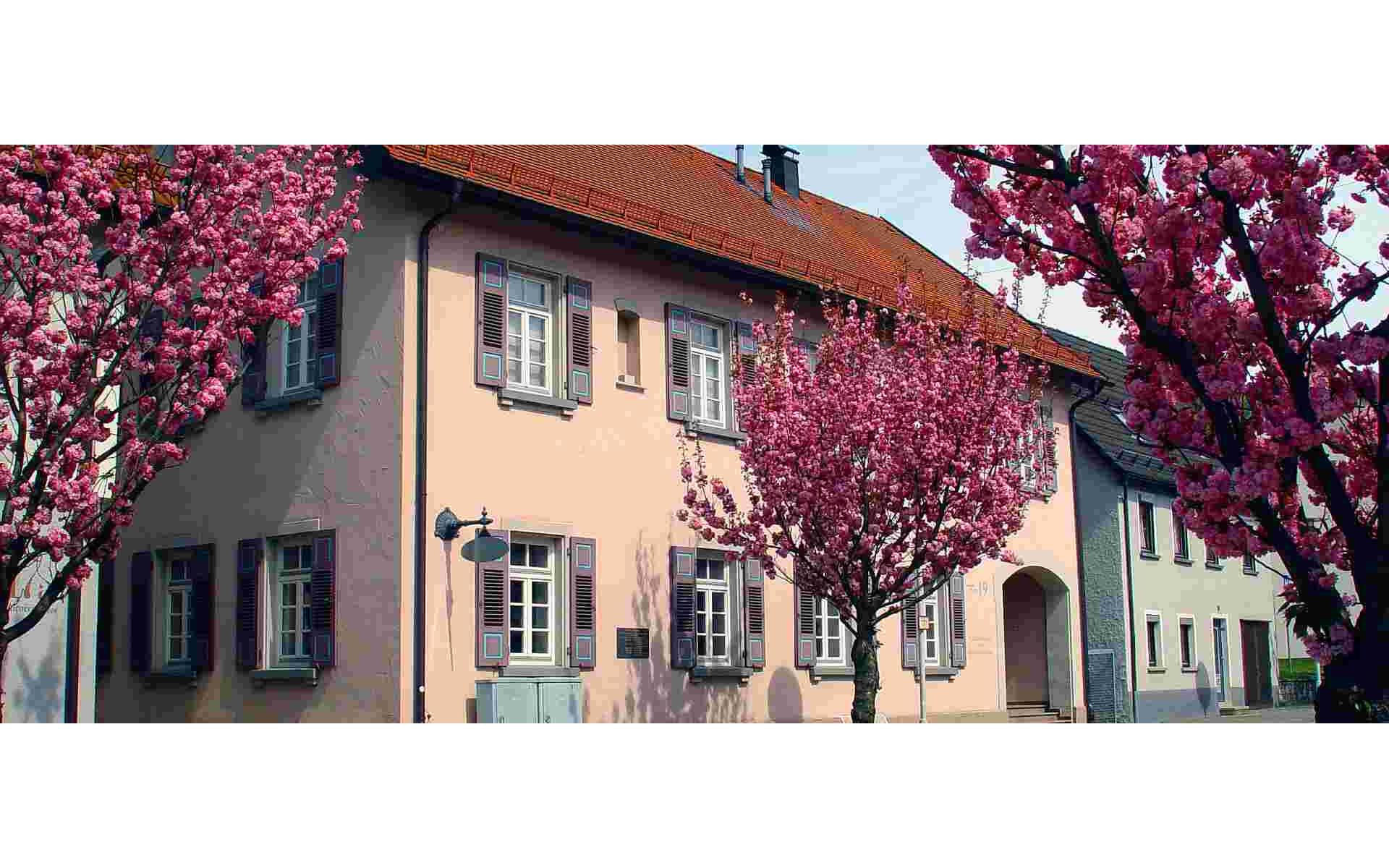Heimatmuseum im Schillerhaus