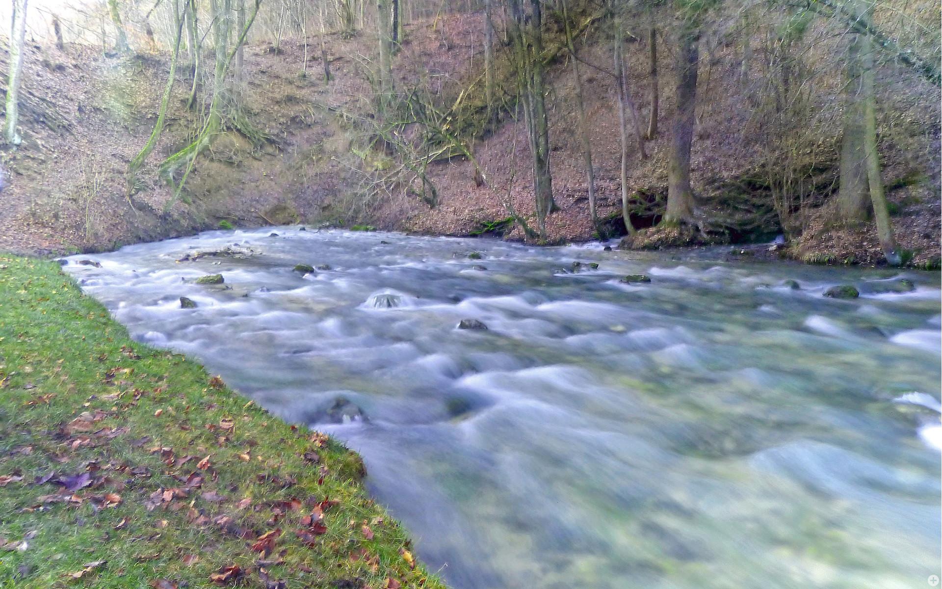 Rauschendes Wasser am Kocherursprung im Herbst
